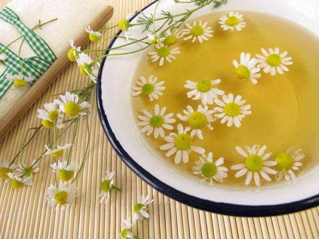 Лечение цистита ромашкой уженщин - рецепты, отзывы